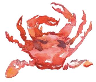 watercolor-crab